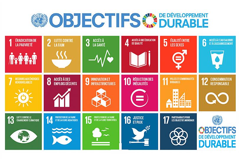 Image result for ODD ONU
