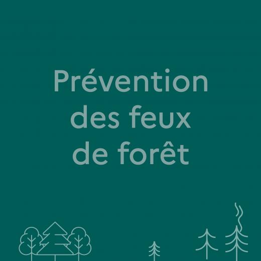 Lien pour avoir plus d'infos sur la prévention des feux de forêt