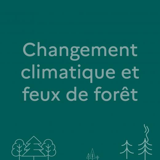 Lien pour avoir plus d'infos sur le changement climatique et feux de forêt