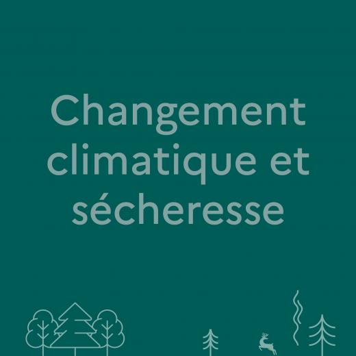 Lien pour avoir plus d'infos sur le changement climatique et sécheresse