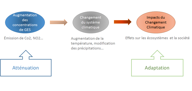 L'atténuation cherche à limiter les causes du Changment climatique, l'adaption cherche à gérer ses effets